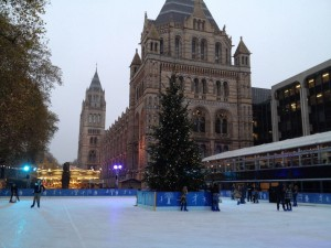 ice rink en el history museum